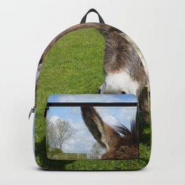 Happy Donkey  Backpack