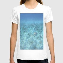 Plenty Of Fish In The Sea (2) T-shirt