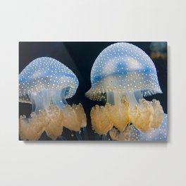 Double Blue Jellyfish - Underwater Photography Metal Print