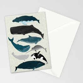 Whales and Porpoises sea life ocean animal nature animals marine biologist Andrea Lauren Stationery Cards
