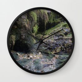 Moss Covered Cliff Face Wall Clock