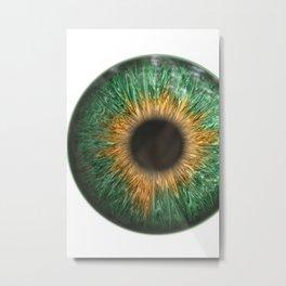 The Green Iris Metal Print