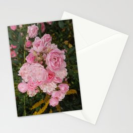 MINIATURE ROSES in the garden  Stationery Cards