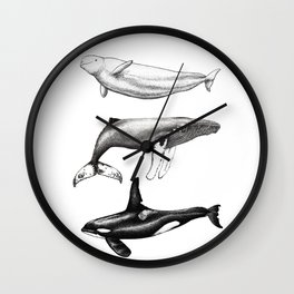 Beluga, humpback whale and orca killer whale Wall Clock