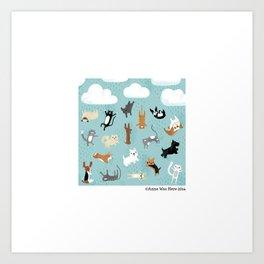 Raining Cats & Dogs Kunstdrucke