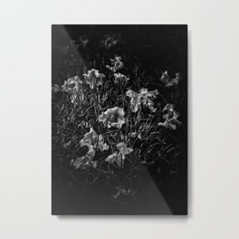 Backyard Flowers In Black And White 23 Metal Print