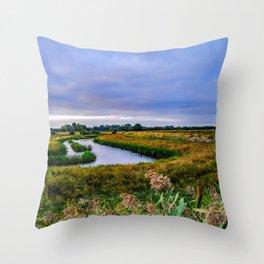 Sunrise in the grazing marshland, Norfolk Throw Pillow