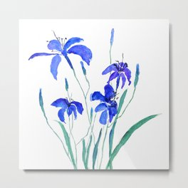 blue day lily Metal Print