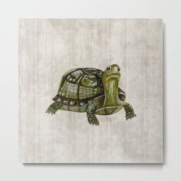 Little Turtle, Forest Animals, Woodland Decor, Woodland Art, Metal Print