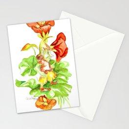 Nasturtium Gnome Stationery Cards