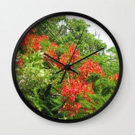 Royal Poinciana Tree Flowers Wall Clock