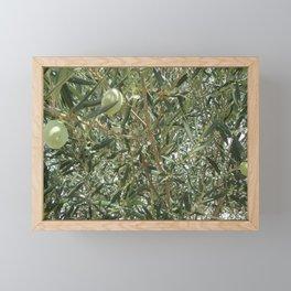 Olive Tree Fall Autumn Patterns Framed Mini Art Print