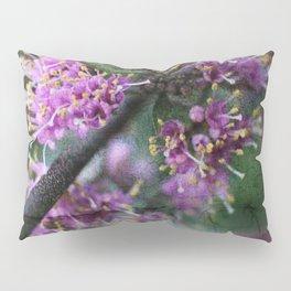 Callicarpa bodinieri blossoms Pillow Sham