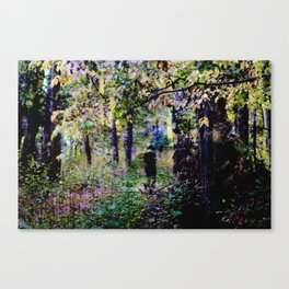 Path Canvas Print