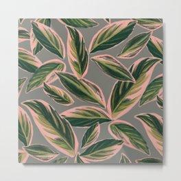 Calathea Leaves Pattern- Pink Green Gray Metal Print