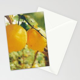 Limone Stationery Cards