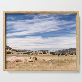 Dry meadows and rolling hills near Julian, CA Serving Tray
