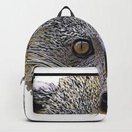 Binturong Bearcat Viverrid Face Grey Moustache Brown Sharp Backpack