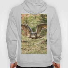 Eagle Owl In Flight Hoody