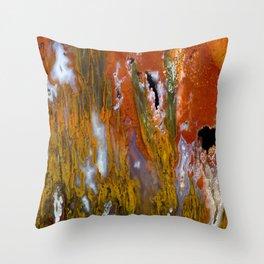Cady Mountain Tube Agate Throw Pillow