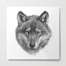 Wolf face G084 Metal Print