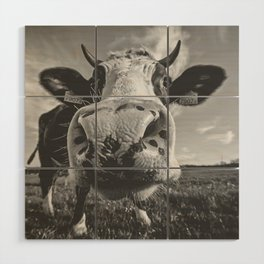 Inquisitive Cow Wood Wall Art