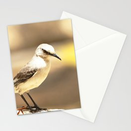 Watercolor Bird, Northern Mockingbird 01, Middletown, Maryland Stationery Cards