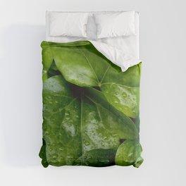 Nature and Greenery 24 raindrop Comforters
