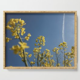 Yellow Flowers under the blue sky Serving Tray