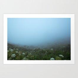Fog-get About It Art Print
