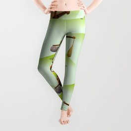 Trebuchet Leggings