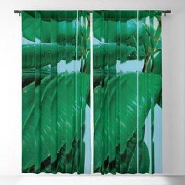 Plant After Rain / Ficus Elastica Blackout Curtain