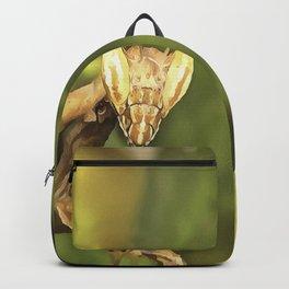 Praying Mantis On Green Garden Background Backpack