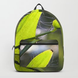Watercolor Spider Web 02 Backpack
