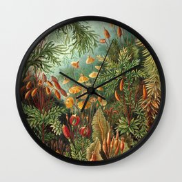Ernst Haeckel Muscinae Microscopic Landscape Wall Clock