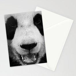 Panda 3 Stationery Cards