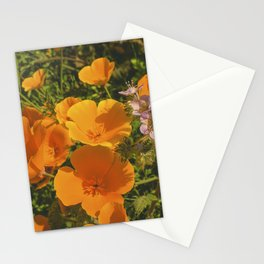 California Poppies 009 Stationery Cards