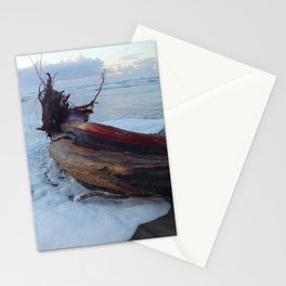New Year's, Oregon Coast Stationery Cards