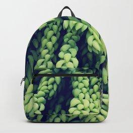 Green of Sedum Morganianum Backpack