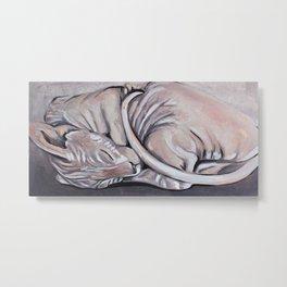 Sphynx, sphinx, sleeping little cat, original oil painting, art Metal Print
