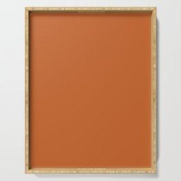Now BURNT ORANGE solid color  Serving Tray
