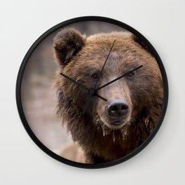 Beautiful Brown Bear Wall Clock