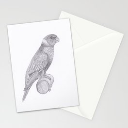 Lorikeets Bird drawing Stationery Cards