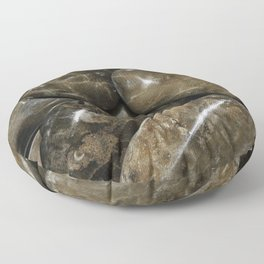 Fossilized Coral Floor Pillow