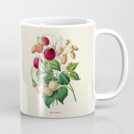 Raspberry Antique Botanical Illustration Coffee Mug
