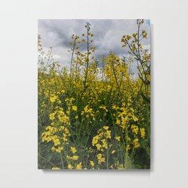Cloudy Meadow Metal Print