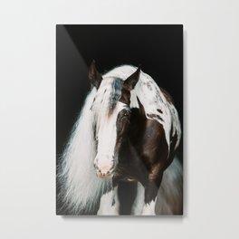Paint horse   fine art horse photography Metal Print