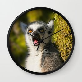 Yawning Ring-Tailed Lemur Wall Clock