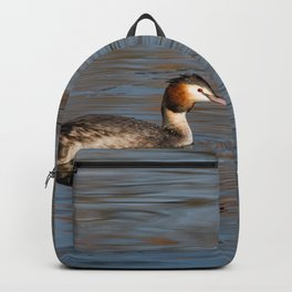 Great crested grebe swims in the calm waters Backpack