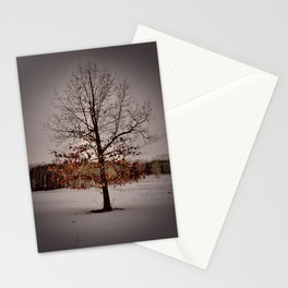 Mature Winter Oak Stationery Cards